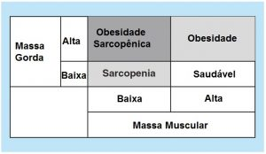 obesidade sarcopênica x composição corporal